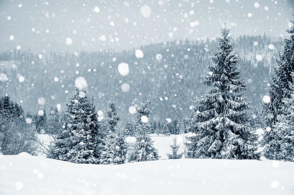 winterland snow in london