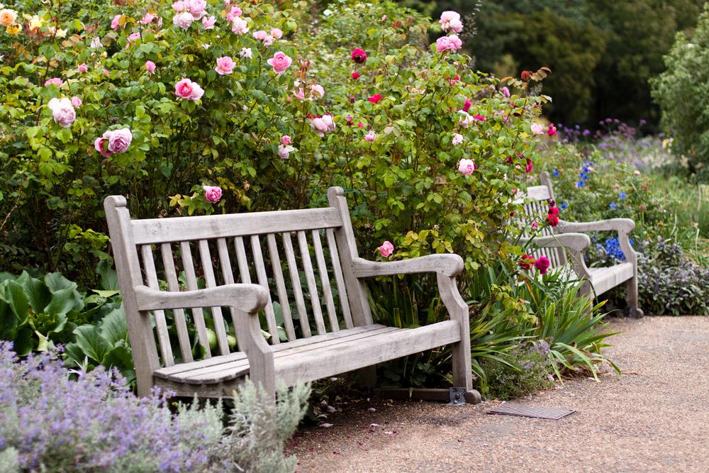 Rose Garden london